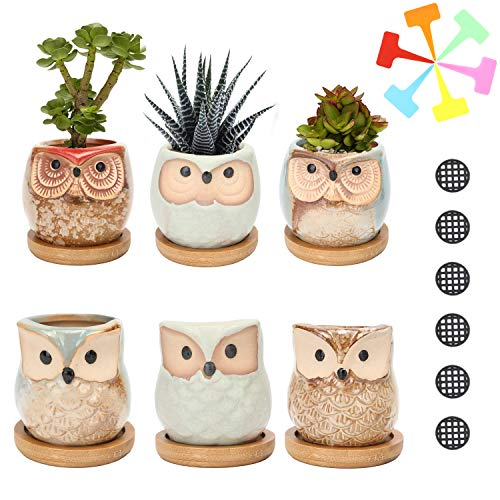 Succulent Planter Pots Owl Ceramic - Small Planter Pots with Drain Hole & Bamboo Saucers Small Cactus Flower Plant Bonsai Container Gift for Office Coworkers Friends Home Decoration Pack of 6