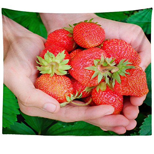 Strawberry Tapestry Festival (Westlake Art Strawberry Foods - Wall Hanging Tapestry - Picture Photography Artwork Home Decor Living Room - 68x80 Inch (9411-1E50E))