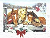 "Pumpernickel Press Horse Trio Boxed Christmas Cards ""Friendly Neighbors""Box of 10 Cards"