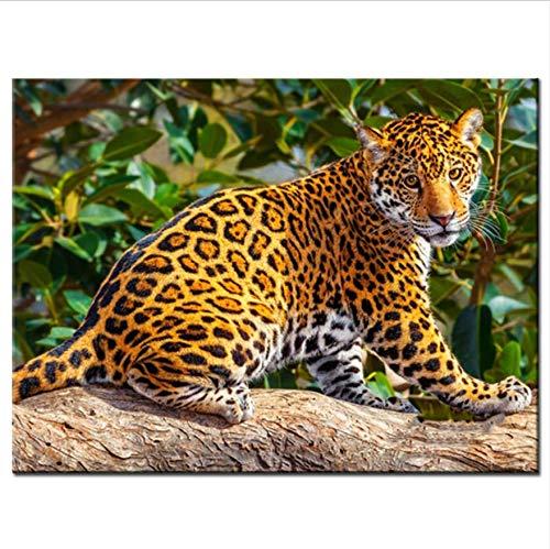 - Full 5D DIY Diamond Painting 3D Diamond Painting Full Round Rhinestones Diamond Painting Embroidery Gold Leopard Decoration 30x40 cm