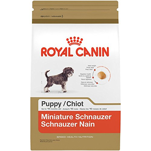 ROYAL CANIN BREED HEALTH NUTRITION Miniature Schnauzer Puppy dry dog food, 2.5-Pound