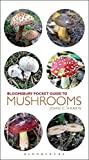 Pocket Guide to Mushrooms (Pocket Guides)