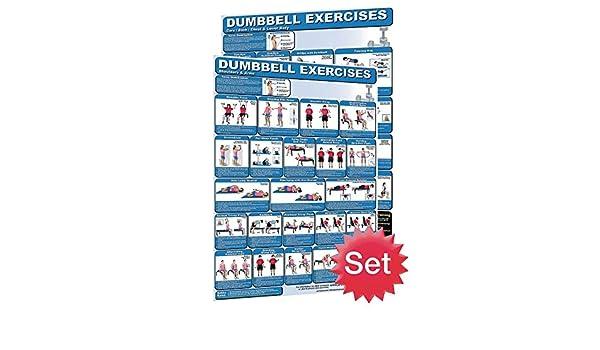 Productive Fitness Publishing Póster de ejercicios con Mancuernas: Amazon.es: Deportes y aire libre