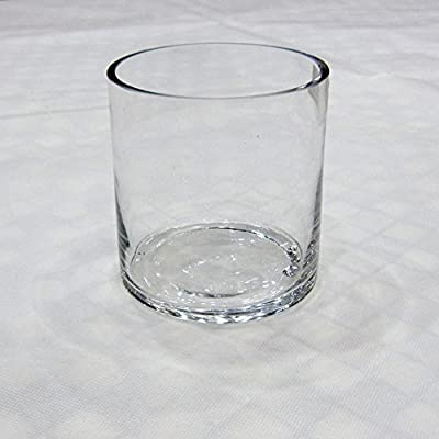 Noah. D Fashion Cylinder Water Flower Plants Glass Vase