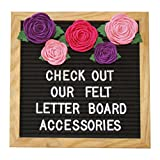 Felt Letter Board Accessories (The Girly) – Letter Board Flower Decorations Perfect for Baby Photo Props and Party Decor Works with All Changeable Message and Letterboards! (Accessory Kit Only!)