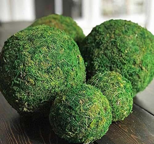 Amazon Com 4 Inch Decorative Moss Ball Orb For Home Decor