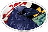 Citizen Pride Baltimore Raven Oval Magnet, 6 x 4