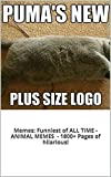 Memes: Funniest of All Time Book: The BEST Animal Memes EVER (PLUS BONUS BOOKS, 1800+ Pages of FUNNY!)