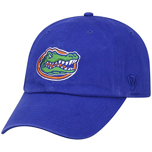 Top of the World NCAA Florida Gators Men's Adjustable Relaxed Fit Team Icon Hat, Royal