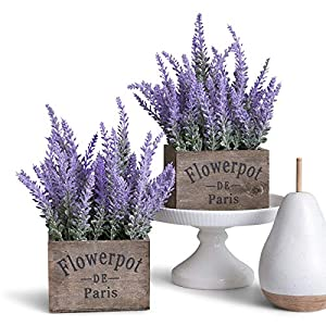 Butterfly Craze Artificial Lavender Potted Plant, Rustic Farm House Decor for Home, Kitchen, and Office, Ideal Silk Flower Arrangements, Set of Two