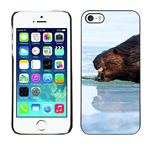 Premio Sottile Slim Cassa Custodia Case Cover Shell // F00007179 castor // Apple iPhone 5 5S 5G