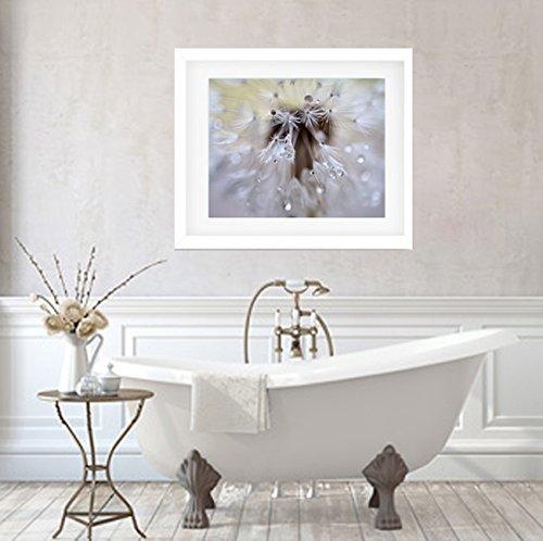 Bathroom Decor, Modern Bathroom Wall Art, Dreamy Dandelion Flower Photographic Print, Rain Drops Water Drops Macro Photography, Bathroom Wall Picture