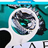 Magnifying Glass with Light, Lighted Magnifying