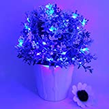 MOMO Pack of 6 sets LED Starry Light Battery