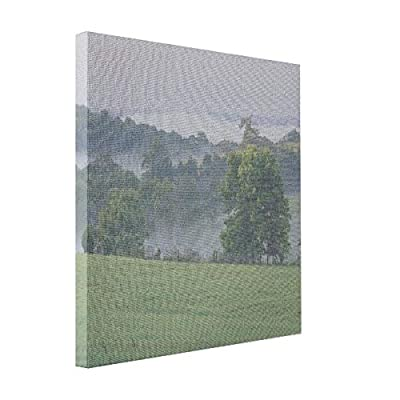VetiVer Canvas Photo Collage Usa, Kentucky. Rolling Hills Of The Bluegrass Canvas Print
