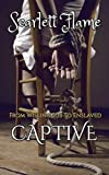 img - for From Willing Sub to Enslaved Captive book / textbook / text book