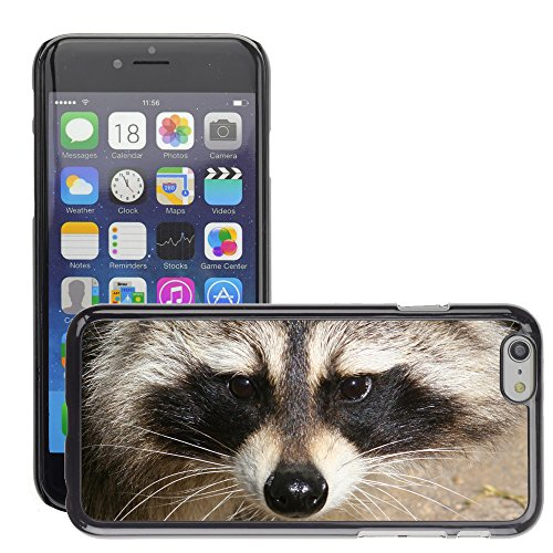 Premio Sottile Slim Cassa Custodia Case Cover Shell // V00002159 Raccoon Visage // Apple iPhone 6 6S 6G 4.7""