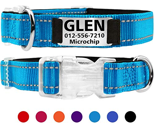 Taglory Personalized Dog Collar with Nameplate, Custom Engraved Pet ID Tags No Noise,Reflective Training Collars for Small Medium Large Dogs,Teal Blue
