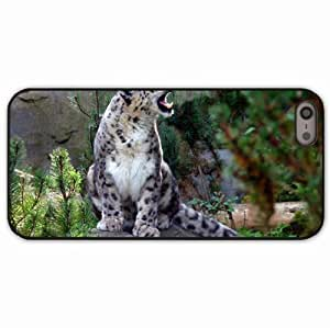 iPhone 5 5S Black Hardshell Case snow leopard screaming aggression predator Desin Images Protector Back Cover