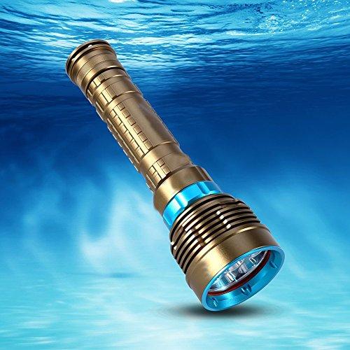 Professional Diving Flashlight, Bright LED Light Safety ...