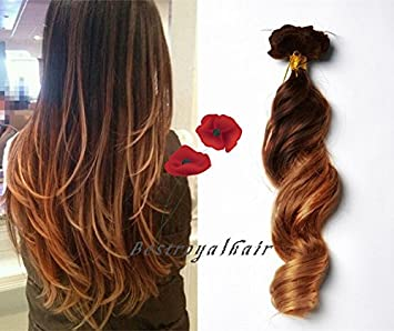 Amazon bestroyalhair 18 clips two colors ombre highlight bestroyalhair 18 clips two colors ombre highlight balayage ombre indian remy clip in hair extensions pmusecretfo Image collections