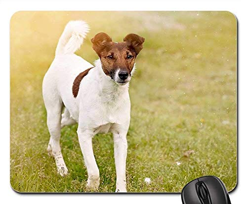 Gaming Mouse Pads,Mouse mat,Dog Animal Pet Attention Meadow Nature Out