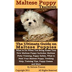 Maltese Puppy Training: The Ultimate Guide on Maltese Puppies, What to Do When You Bring Home Your New Maltese Puppy