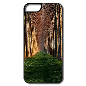 Love Path Lined Trees Case For IPhone 5/5s