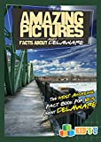 Amazing Pictures and Facts About Delaware: The Most Amazing Fact Book for Kids About Delaware (Kid's U)