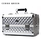CERROQREEN Fashion Pro Portable Makeup Organizer Artists Cosmetics Train Case