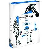 Hammermill Paper, Tidal Copy Paper, 11 x 17 Paper, Ledger Size, 20lb Paper, 92 Bright, 1 Ream / 500 Sheets (162024R) Acid Free Paper