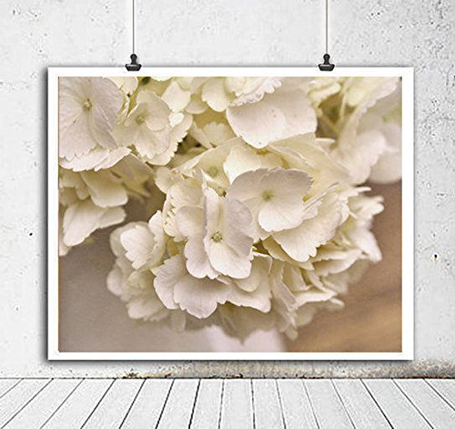 White Hydrangea Art Print, Shabby Chick Bathroom Wall Art, Large Photography Print, Neutral Cottage Wall Decor, Powder Room Picture from 5x7 to 24x30