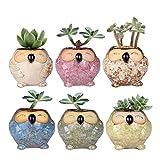Cheap WITUSE owl pots small succulent planter mini owl planters, ceramic owl planter small planters -6 pots