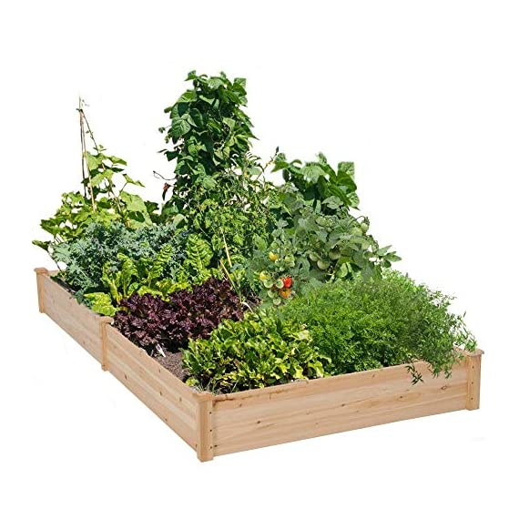 YAHEETECH Wooden Raised Elevated Garden Bed Kit with Legs Planter Flower Herb Boxes for Vegetables Flower with Shelf… 1 NATURAL ELABORATE MATERIALs: The raised garden bed is made of non-paint and natural wood which is known for its strength and stability. The thick solid boards are polished well to prevent any undesired injury caused by wood splinters. 2 TIERS & VERSATILE: This wooden planter features 2 tiers for planting and storing. You can cultivate plants, like vegetables, flowers, herbs in your patio, yard, garden, and greenhouse. Also, the lower shelf can be used for storage and display to put some planting tools and other accessories there. NICE-LOOKING GARDENING ACCESSORY: The natural color makes your garden and greenhouse more original and healthy, and its natural wood grain on the boards bring a rustic and natural style to your garden.