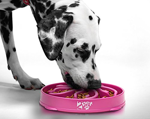 (2PET Slow Feed Dog Bowl Slowly Bowly Fun Interactive Dog Dish for Fast Eaters. Prevent Bloating. Fun to Use Dog Bowl. Cat Feeder Friendly. [Skid Protection Upgraded])