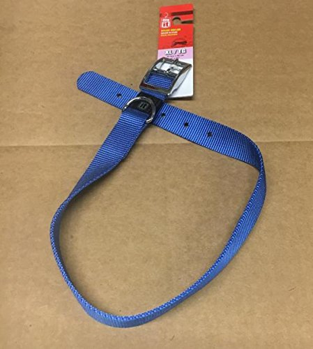 (Dogit Nylon Single Ply Dog Collar with Buckle, X-Large, 26-Inch, Blue)