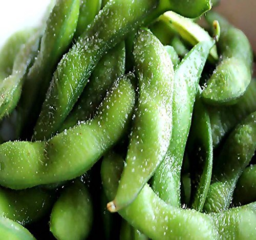 Japanese Edamame seeds ~~ Soy Bean HIGH IN PROTEIN -- Young Soy Bean - 80 - 90 Days (0125 Seeds - 1 -