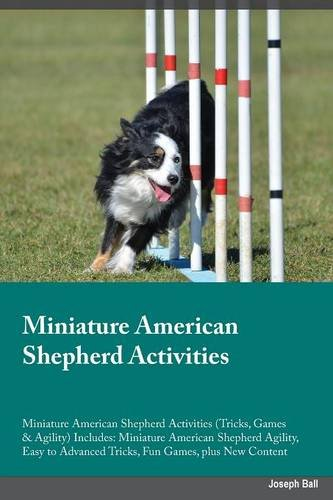 Miniature-American-Shepherd-Activities-Miniature-American-Shepherd-Activities-Tricks-Games-Agility-Includes-Miniature-American-Shepherd-Agility–Advanced-Tricks-Fun-Games-plus-New-Content