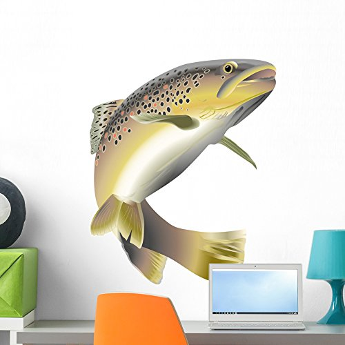 Pond Fish Variety Stick (Wildlife Trout Wall Decal by Wallmonkeys Peel and Stick Animal Graphics (24 in H x 20 in W) WM243333)