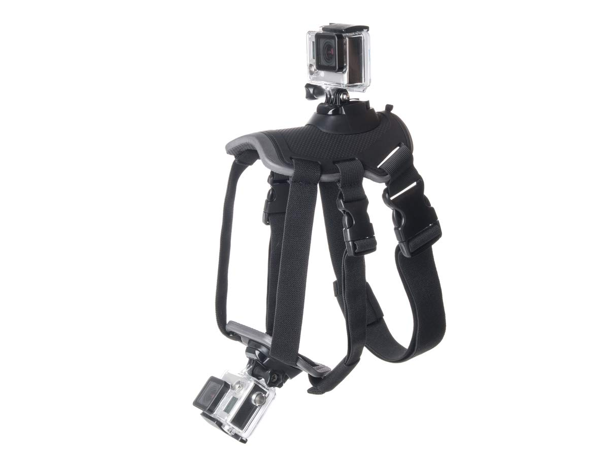 Chest Strap For Motorola Vervelife Sony Loads Action Cam Harness Mount