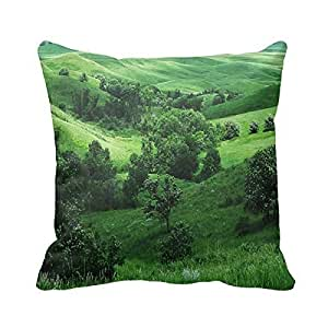 """pillow perfect Decorative Elegant Feature theme Feature Feature theme Pillow Cover 20""""x 20"""" (Twin Sides) Square Pillowcase Cotton Cushion Covers Holiday Gift"""