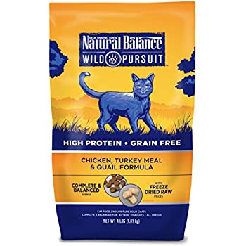 Amazon Best Seller Dry Cat Food