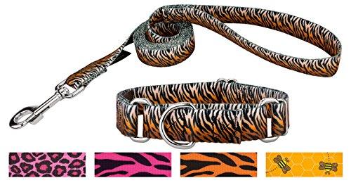 Stripe Martingale Dog Collar - Country Brook Petz - Bengal Tiger Stripes Martingale Dog Collar & Leash - Medium