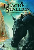 Front cover for the book The Black Stallion by Walter Farley