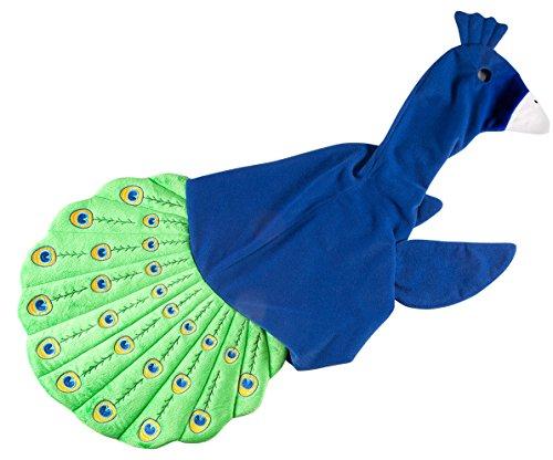 Strut Sculpture - Miles Kimball Peacock Goose Outfit