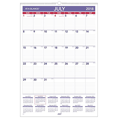 AT-A-GLANCE Academic Monthly Wall Calendar, July 2018 - June 2019, 15-1/2