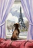 """Dachshund"" Dog Art Print Signed by Artist DJ Rogers"