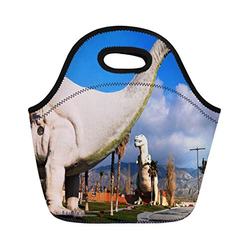 Semtomn Lunch Bags Cabazon Ca Usa February 22 2011 Giant Dinosaurs Roam Neoprene Lunch Bag Lunchbox Tote Bag Portable Picnic Bag Cooler Bag