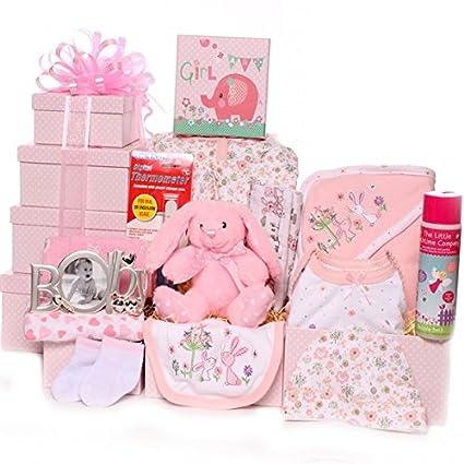 Cesta de regalo de lujo para una niña bebé, ideal como regalo de ...