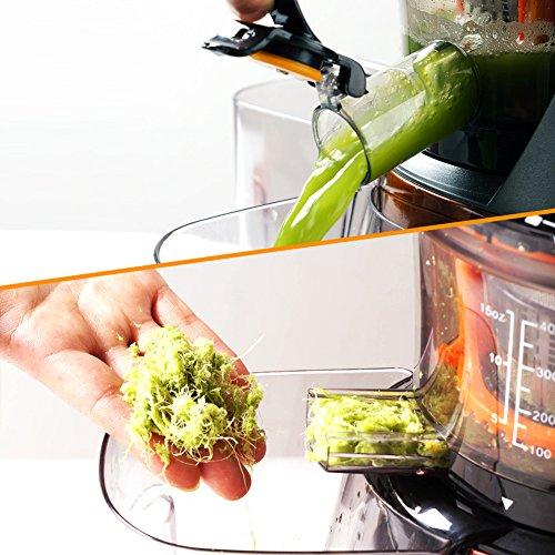 SKG Premium 2-in-1 Anti-Oxidation Slow Masticating Juicer & Multifunction Food Processor ...